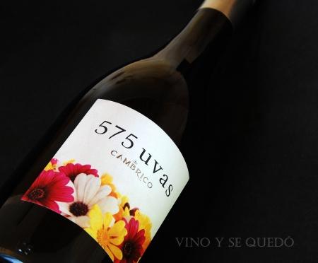 575 uvas de Cambrico 2007