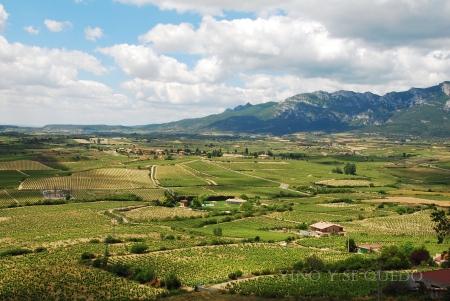 Desde Laguardia